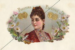 1893-1894 Grande étiquette Boite à Cigare Havane FAUSTINA - Etiquettes