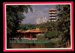 C492 SINGAPORE - CHINESE GARDEN - Singapore