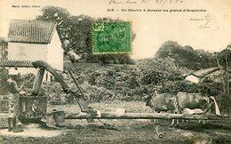 INDOCHINE(MOULIN) ARACHIDE - Viêt-Nam