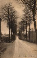 BELGIQUE - LUXEMBOURG - LIBIN - Entrée. Route De Poix. - Libin