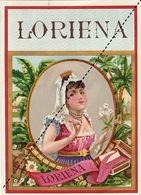 1893-1894 étiquette Boite à Cigare Havane LORIENA - Etiquettes