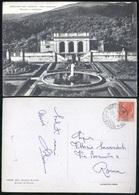 SORIANO NEL CIMINO - VITERBO - 1954 - VILLA CAPACCINI - Viterbo