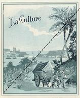 1893-1894 étiquette Boite à Cigare Havane LA CULTURE - Etiquettes