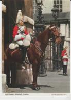 Postcard - Life Guards , Whitehall, London  - Unused Very Good - Ansichtskarten