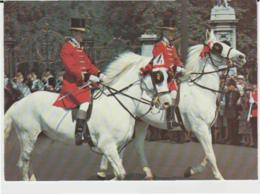 Postcard - Royal Grooms At The Trooping The Colour London  - Unused Very Good - Ansichtskarten