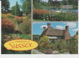 Postcard - Gardens Of Sussex - Three Views  - Unused Very Good - Unclassified