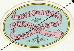 1893-1894 étiquette Boite à Cigare Havane LA REINE DES ANTILLES - Etichette