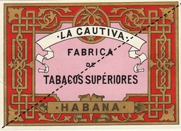 1893-1894 étiquette Boite à Cigare Havane - Etichette