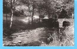 Orchimont-Vresse-sur-Semois-+/-1960-Pont  De Pierre Cérivaux, Près Du Point D'arrêt De L'ancien Chemin De Fer Vicinal - Vresse-sur-Semois