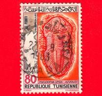 TUNISIA - Usato - 1982 - Paleontologia Tunisina - Pseudophillipsia Azzouzi - 80 - Tunisia (1956-...)