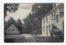 's Gravenwezel  Vogelenzang 1911  Uitg.Daems,'s Gravenwezel - Schilde