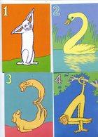 Chiffres Animaux  Jean-Claude Castelli - Dressed Animals