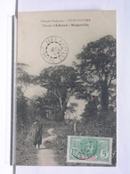 COLONIES FRANCAISES - COTE D'IVOIRE - CHEMIN D'ADJAME A BINGERVILLE - ANIMEE - 1909 - TRES BEL ETAT - Côte-d'Ivoire