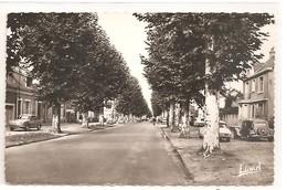 72 - ARNAGE - Centre Du Bourg. - France