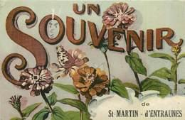 06* ST MARTIN D ENTRAUNES Souvenir (fantaisie)                  MA84,0397 - France