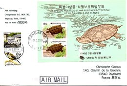 COREE DU SUD. BF 489 De 1996 Sur Enveloppe Ayant Circulé. Tortue. - Tortues