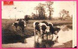 Saison De 1910 - Le Gué - Derniers Rayons Par F. PLANQUETTE - 1911 - Oblit. PARIS 104 AV. BOSQUET - Cows