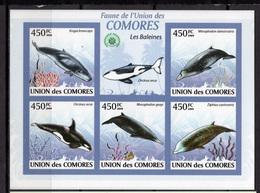 2009 - COMORES - Catg.. Mi. 2450/2454 - NH - (CW1822.10) - Isole Comore (1975-...)