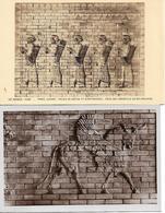 ART ASSYRIEN PERSE PARIS LOUVRE PALAIS DE DARIUS ET D ARTAXERXES SUSE TAUREAU AILE LOT 2 CARTES BAS  RELIEF - Iran