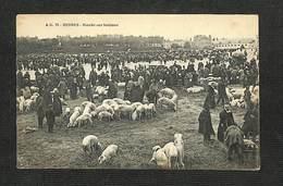 35 - RENNES - Marché Aux Bestiaux - Rennes