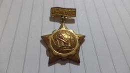 Bulgarian Medal Central Council Gold - Medaillen & Ehrenzeichen