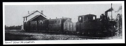 1986  --  TRAIN EN GARE DE SAINT JEAN DE LIGNERES   DEBUT DE SIECLE   3Q428 - Non Classés
