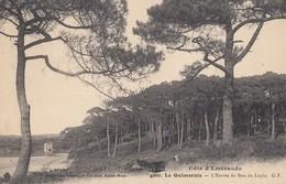 LA GUIMORAIS (Saint-Coulomb): L'Entrée Du Bois Du Lupin - Saint-Coulomb