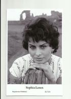 SOPHIA LOREN - Film Star Pin Up PHOTO POSTCARD - 20-1231 Swiftsure Postcard - Artistas