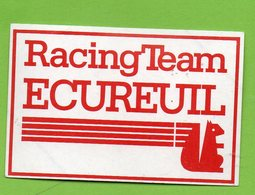 CAISSE EPARGNE RACING TEAM ECUREUIL * AUTO MOTO RALLYE *  AUTOCOLLANT A1887 * - Autocollants