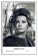 SOPHIA LOREN - Film Star Pin Up PHOTO POSTCARD - 20-89 Swiftsure Postcard - Künstler