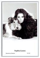 SOPHIA LOREN - Film Star Pin Up PHOTO POSTCARD - 20-282 Swiftsure Postcard - Künstler