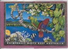 RAINFOREST MEETS REEF AUSTRALIA - Australia