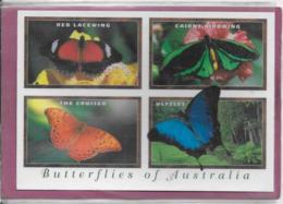 BUTTERFLIES OF  AUSTRALIA - Australia