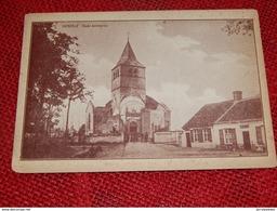 HERZELE  -  Oude Kerktoren - Herzele