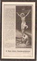 DP. ALPHONSIUS LUYCKX ° BELLINGHEN 1880 - + 1912 - Religion & Esotericism