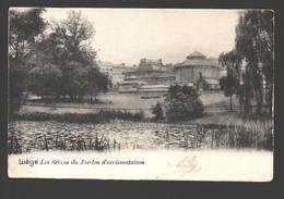 Liège - Les Serres Du Jardin D'Acclimatation - Dos Simple - 1903 - Liege