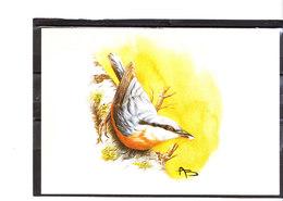 Buzin - Sittelle Torchepot Horizontale - 1985-.. Oiseaux (Buzin)
