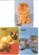 3 Pocket Calendars  CATS  1992  Russia - Petit Format : 1991-00