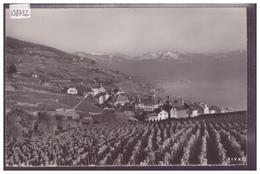 DISTRICT DE LAVAUX - RIVAZ - TB - VD Vaud