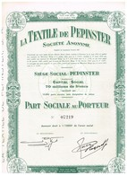 Action Ancienne - La Textile De Pépinster - Société Anonyme  - Titre De 1951 - Industrie