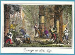 LANDES - Ecorçage Du Chêne-liège - Gravure Ancienne - Francia