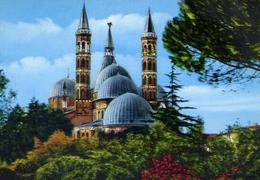 Padova - La Cupola Della Basilica Del Santo Viste Dai Giardini Treves - Formato Grande Non Viaggiata – E 10 - Padova