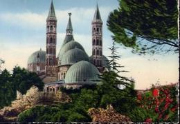 Padova - La Cupola Della Basilica Del Santo Viste Dai Giardini Treves - Formato Grande Viaggiata Mancante Di Affrancatur - Padova