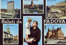 Saluti Da Padova - 101 - Formato Grande Non Viaggiata – E 10 - Padova