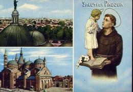 Saluti Da Padova - 38 - Formato Grande Non Viaggiata – E 10 - Padova