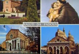 Saluti Da Padova - 938 - Formato Grande Non Viaggiata – E 10 - Padova