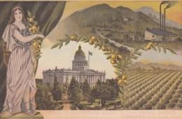 Sacramento California, National Irrigation Congress Meeting 2 September 1907, Oranges, Capitol, C1900s Vintage Postcard - Stati Uniti