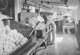 Fabrication De Coton Nitré  Kodak  1926 - Non Classés