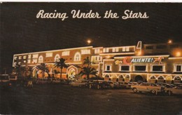 Mexico Tijuana Caliente Race Track Dog Racing Under The Stars 1953 - Mexico