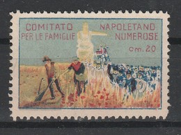 Napoli. Erinofilo Municipale COMITATO NAPOLETANO PER LE FAMIGLIE NUMEROSE C. 20 - Italia